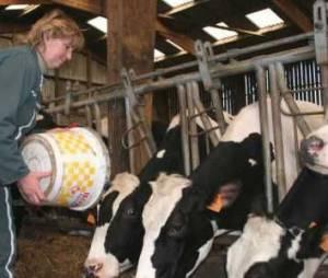 Agriculture : les femmes s'imposent dans le pré