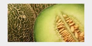 De Cantaloup ou de Cavaillon, c'est la saison du Melon !