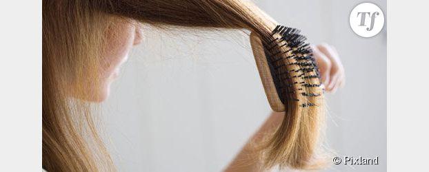 Chute de cheveux : pourquoi perd-on ses cheveux en automne ?