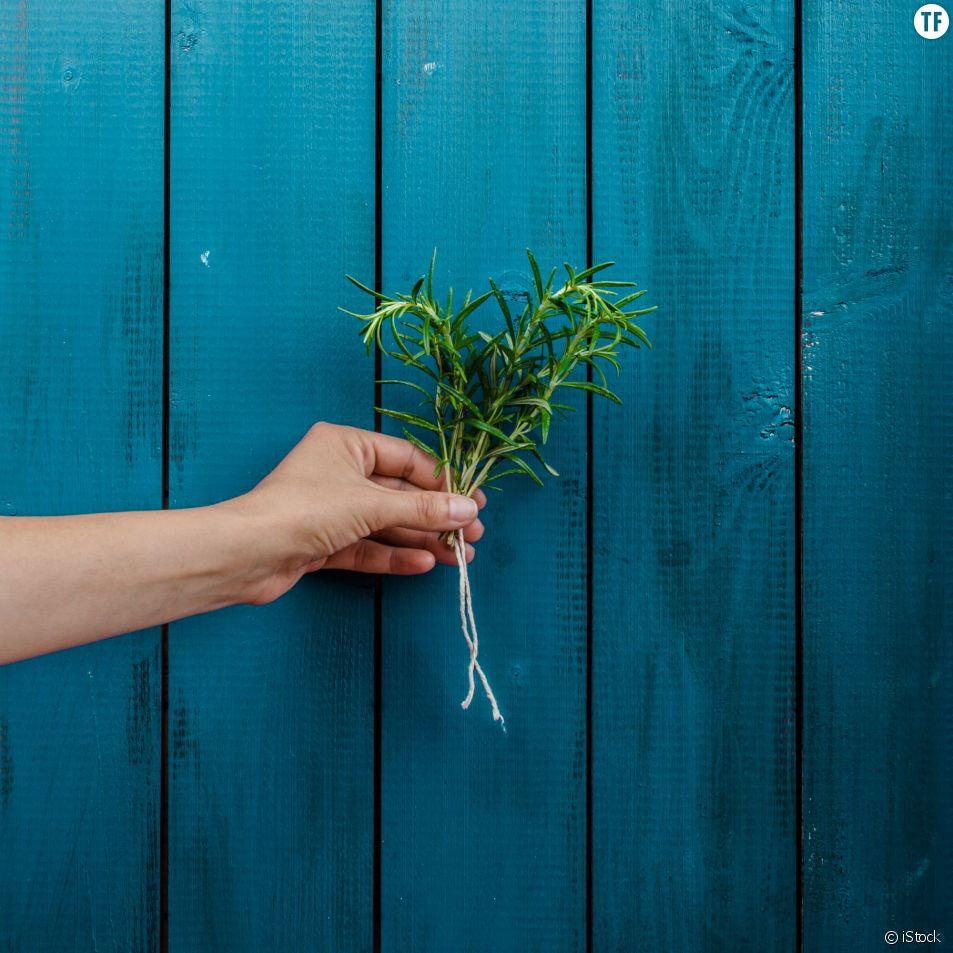 Écologie : 20 petits gestes quotidiens qui font du bien à la planète
