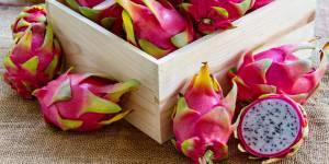 Le pitaya, le super fruit qui affole les papilles des foodistas