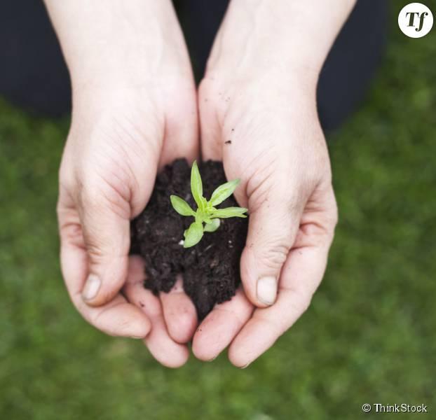 14 gestes green pour lutter contre le r chauffement climatique son petit niveau terrafemina. Black Bedroom Furniture Sets. Home Design Ideas