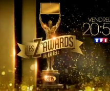 Les Z'Awards de la télé 2015 : le palmarès complet (replay 11 décembre)