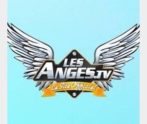 Les Anges 8 : un candidat de Koh-Lanta au casting