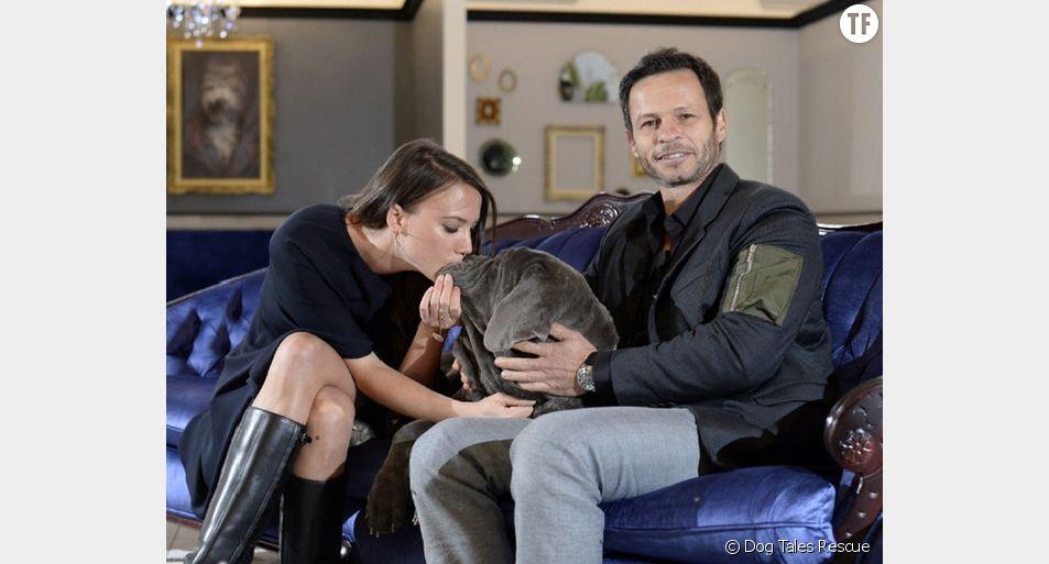 Danielle Eden et Rob Scheinberg sont propriétaires du refuge Dog Tales Rescue