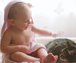 Avoir un chat, c'est dangereux quand on a un bébé ?