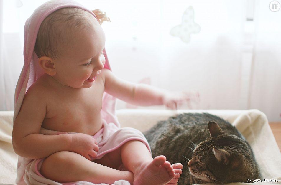 Bébé et chat font-ils bon ménage ?