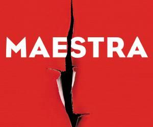 """4 bonnes raisons de lire """"Maestra"""", le thriller érotique de L.S. Hilton"""