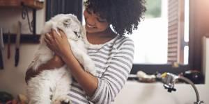 Les chats sont bons pour la santé, c'est scientifiquement prouvé