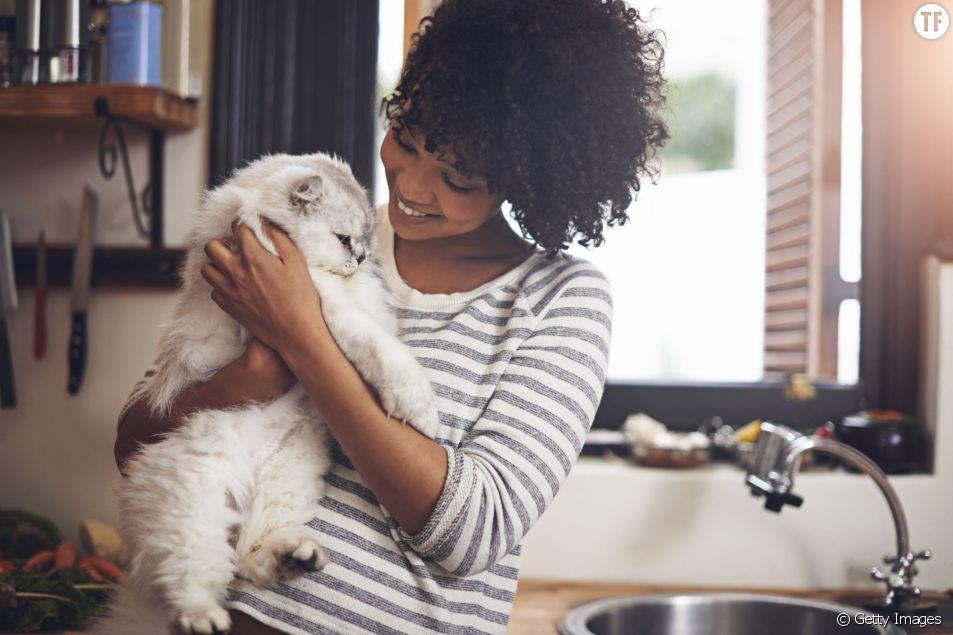 Un chat pour être en bonne santé
