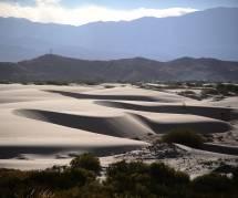 Trophée Roses des Andes 2016 : les coulisses