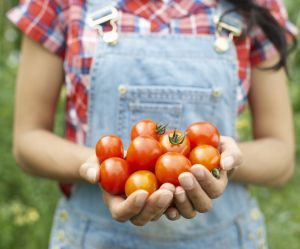 Voici la meilleure façon de cuisiner des tomates