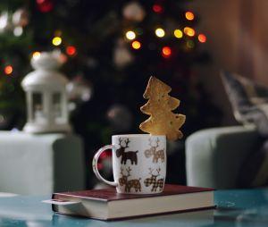 Noël 2016 : 13 beaux livres à mettre sous le sapin