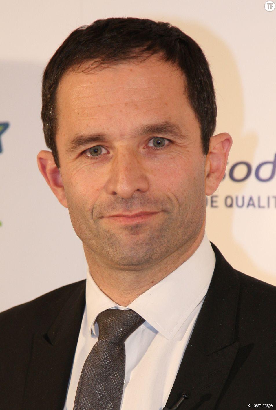 Portrait de Benoît Hamon en 2013