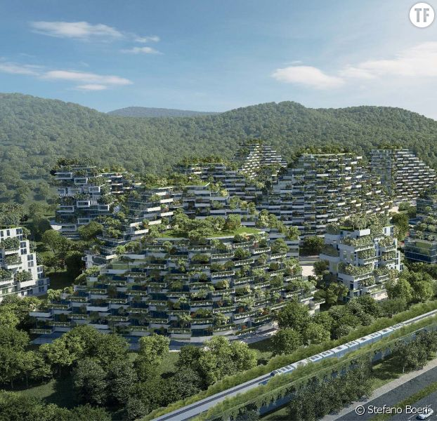 La chine construit une ville for t de 40 000 arbres pour for Piscine meudon la foret