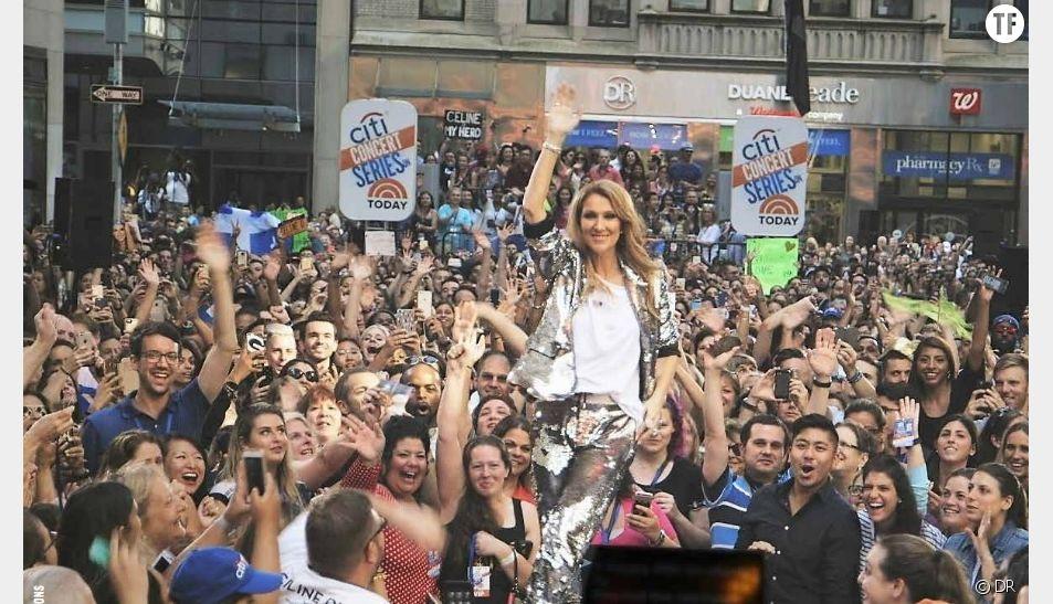 """Le documentaire """"Un an avec Céline Dion"""""""