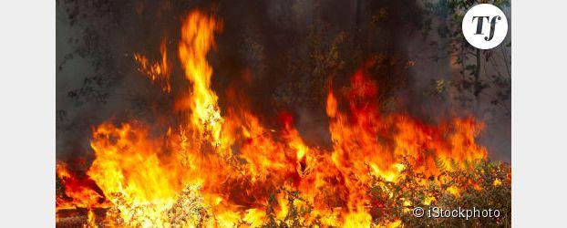 Incendies à La Réunion : Joly et Duflot  s'indignent contre l'État