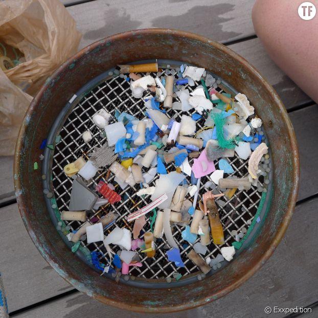 Des morecaux de plastique récupérés dans l'océan