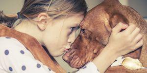 Pourquoi certaines personnes adorent les animaux et d'autres beaucoup... moins