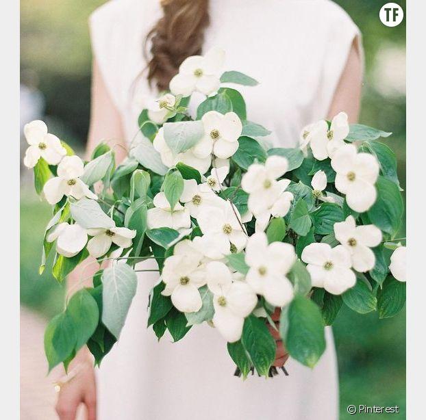 Les bouquets de fleurs de cornouiller