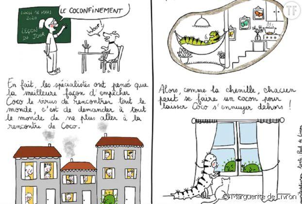 """Le """"coconfinement"""", une analogie ludique et pédagogique."""