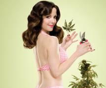 Série : Showtime offre une saison 8 à Weeds & Mary-Louise Parker