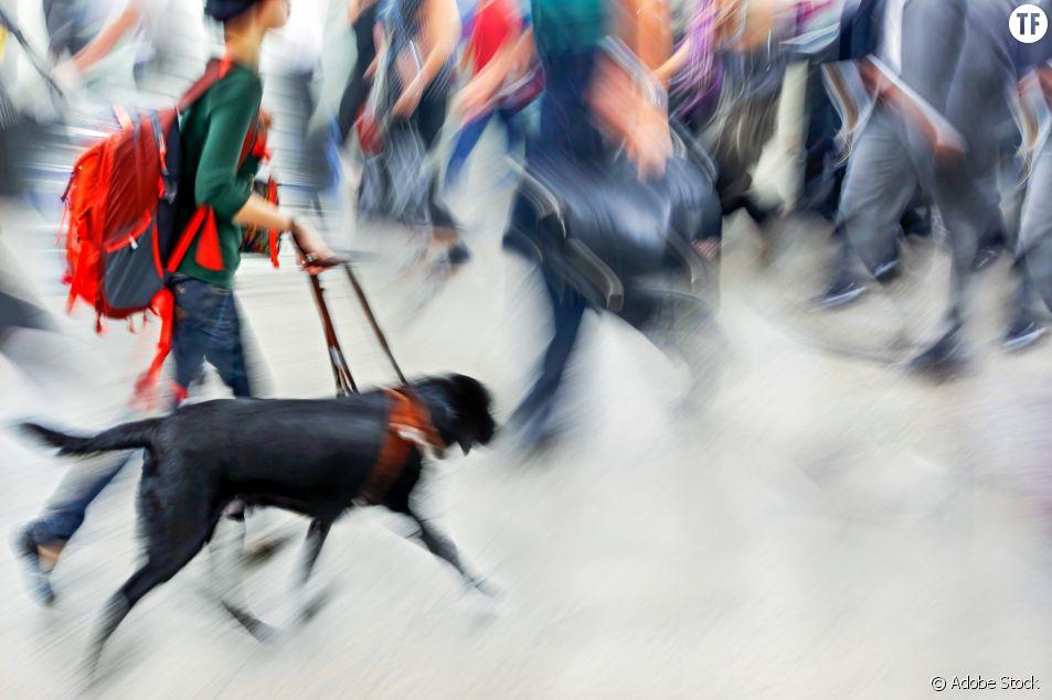 Une jeune femme épileptique refoulée d'un magasin à cause de son chien