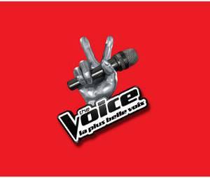 Johnny Hallyday dans « The Voice »