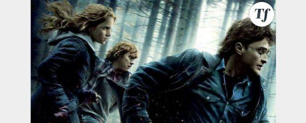 Une encyclopédie pour Harry Potter