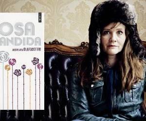 « Rosa Candida », ou la bouffée d'oxygène venue d'Islande !