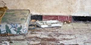 Campagne contre le mal-logement : 3 millions de Français sont mal logés