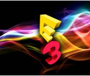 E3 2012 : Xbox Live Companion, le streaming de Microsoft ?