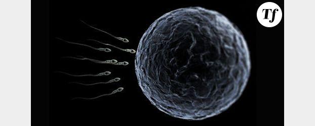 Le mode de vie n'influerait pas sur la qualité du sperme