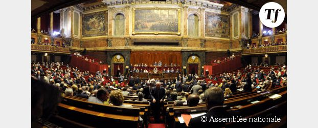 Groupes parlementaires : le graal des députés