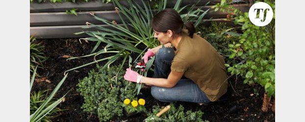 que planter dans son jardin id es d coration id es d coration. Black Bedroom Furniture Sets. Home Design Ideas