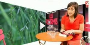 France 2 : un décolleté trop plongeant flouté dans Télé Matin (vidéo)