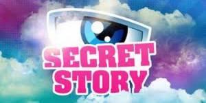 Téléréalité : quelle vie après Secret Story ?