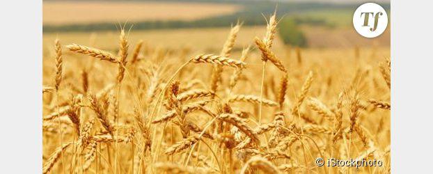 Réchauffement climatique : le prix des denrées alimentaires pourrait doubler d'ici à 2030