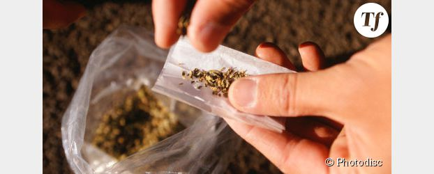 """Dépénalisation du cannabis : """"Il faut dépasser la politique de l'autruche"""""""