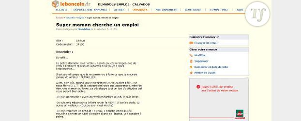 """Leboncoin.fr : le super CV d'une """"Super maman"""" crée le buzz"""