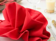 Papillon fleur toile 6 mod les de pliage de serviettes de table vid os - Pliage serviette nouvel an ...