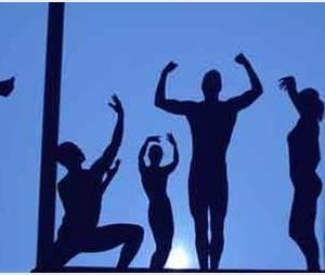 Die Mobilés : la troupe gagnante d'Incroyable Talent 2012