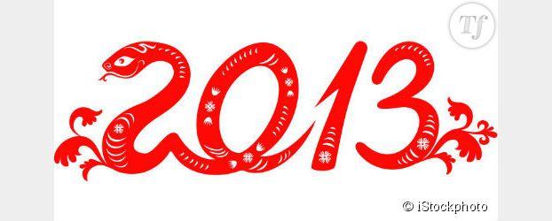 Nouvel An Chinois 2013 : date de l'année du serpent en France