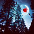 Ali Jardine gagne sa vie grâce à ses montages postés sur Instagram