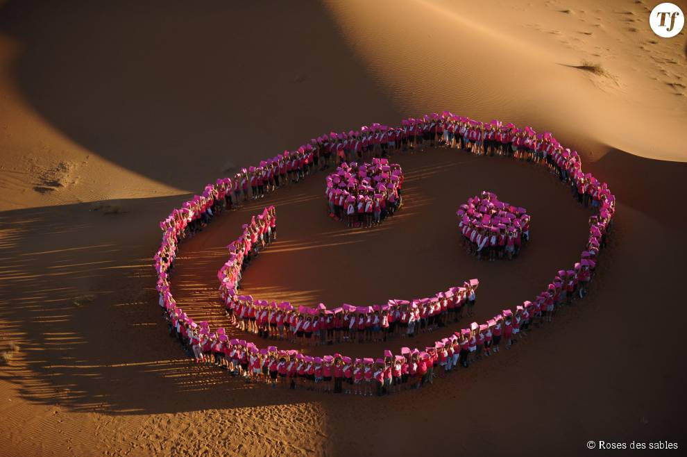 Les roses font le smiley en soutien à la lutte contre le cancer du sein