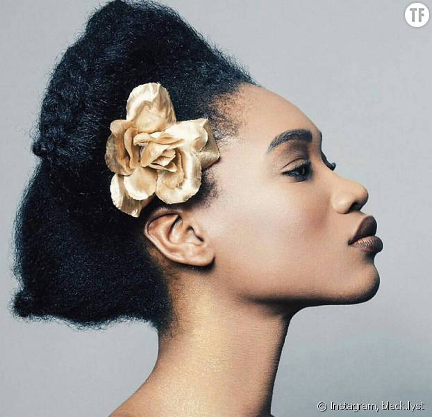 Coiffure afro tresses hiver 2015 - Coiffures afro : les