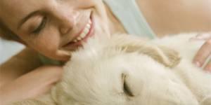 Pourquoi les chiens nous font craquer : l'explication scientifique