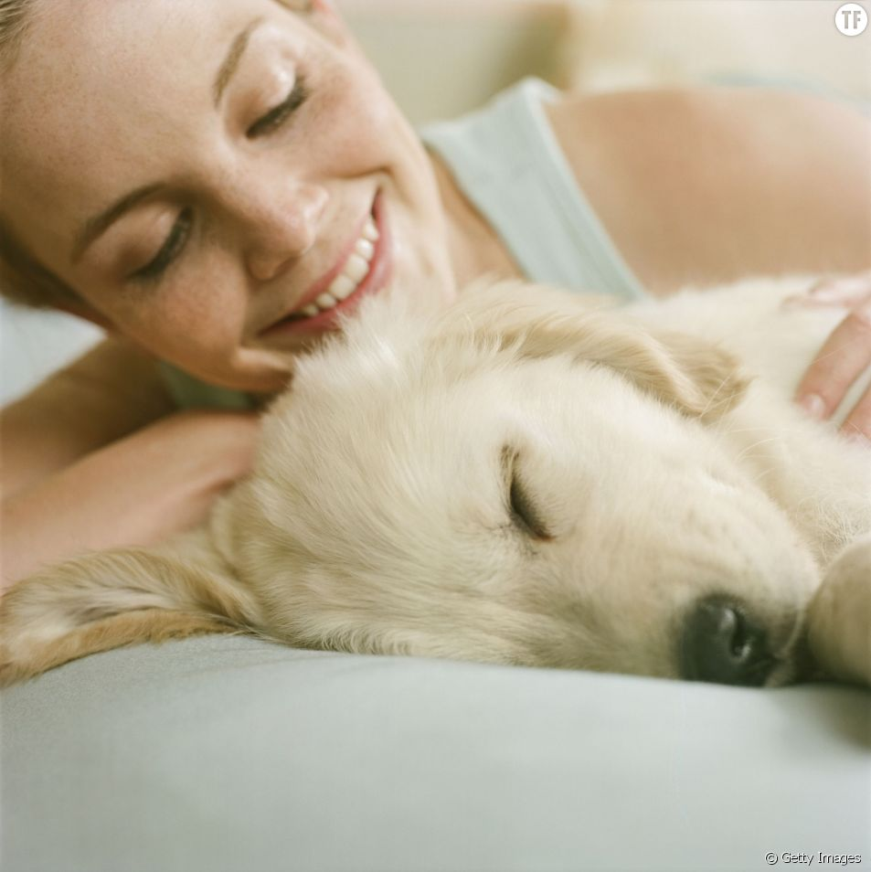 Pourquoi les chiens sont-ils aussi craquants ? L'explication scientifique