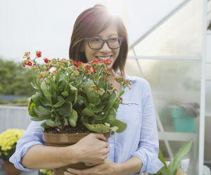 L'astuce étonnante du glaçon pour bien arroser vos plantes