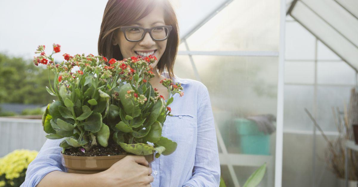 l 39 astuce du gla on pour bien arroser vos plantes terrafemina. Black Bedroom Furniture Sets. Home Design Ideas